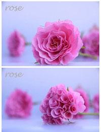 Como Hacer Un Ramo De Rosas Con Papel Crepe