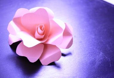 Como Hacer Flores De Cartulina