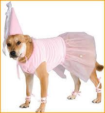 Como hacer un disfraz facil para mascotas..