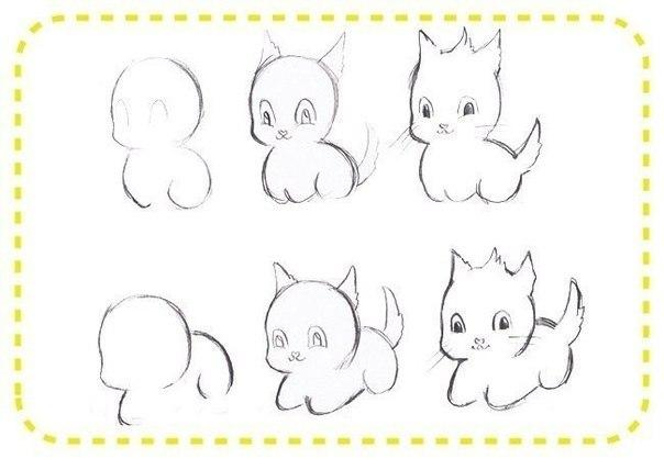 Como dibujar gatos bebes (2)