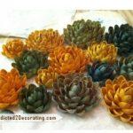 Como hacer flores con cascara de pistaches