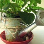 Maceta hecha con una regadera de mano para plantas